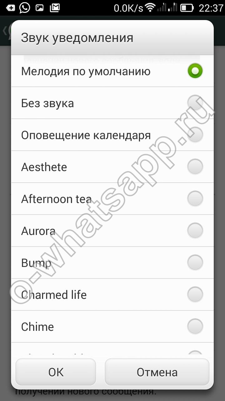 12 вопросов, которые вы задали мне про WhatsApp»
