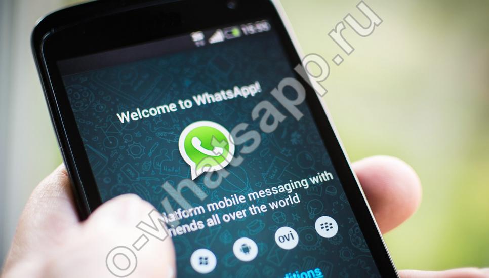 Как выйти из WhatsApp или отключить приложение на время?