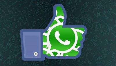 У WhatsApp уже 800 млн активных пользователей