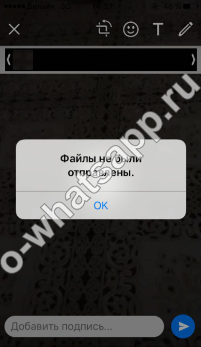 в blackberry не уходят фотки и видео по watsapp