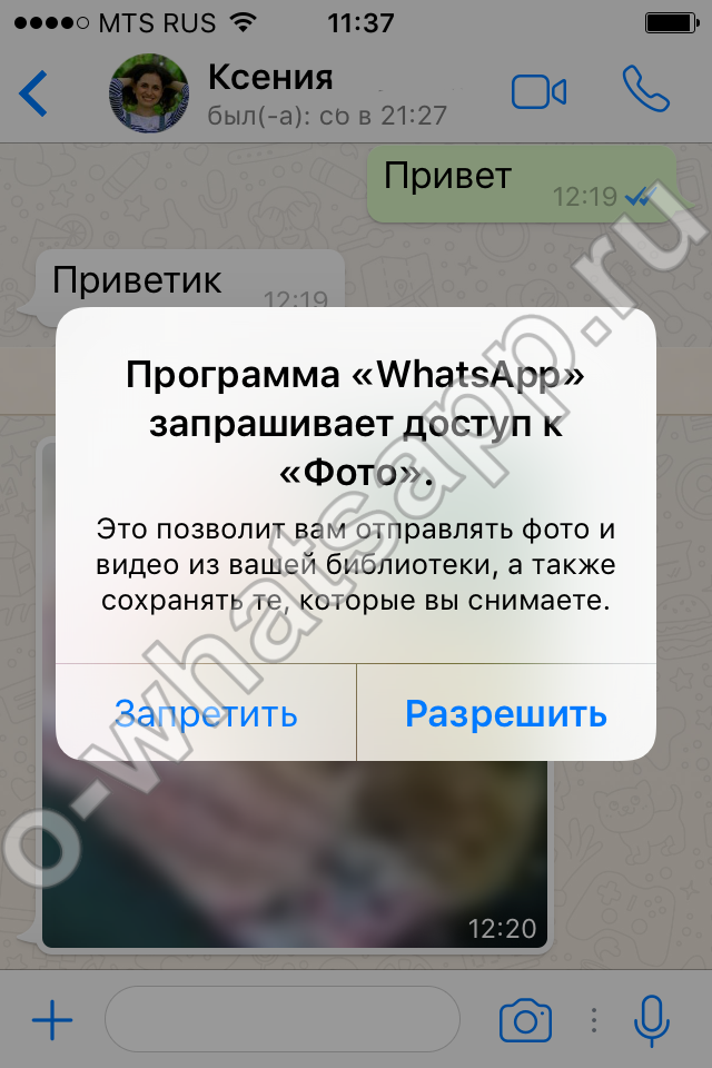 video-galerei-prislannoe-russkie-porno-ebat-devushku