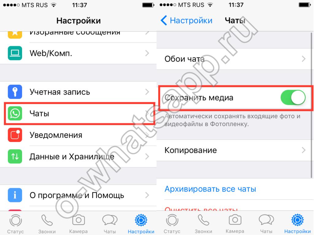 Как из whatsapp сохранить фото на компьютер