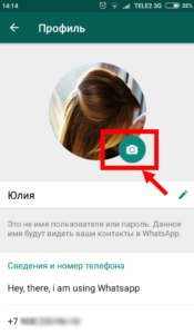 whatsapp фото профиля