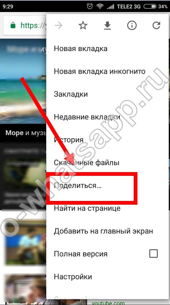 Прикольные мультяшные видео открытки для whatsapp